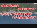 【釣り動画】常神半島はアジが大量にいます!アジ釣り放題!アオリイカをエギングで挑戦!