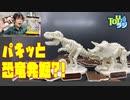 【キャラパキ発掘恐竜チョココラボアイテム】パキパキ割って組み立てる!?プラパキットを組み立ててみた!【恐竜骨格】※チョコレートではありません
