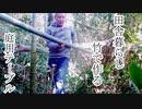 ぴ【田舎暮らし】竹切ってDIY 庭用食卓テーブルを作る