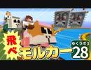 【Minecraft】ゆくラボ3~魔法世界でリケジョ無双~ Part.28【ゆっくり実況】