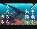 【刀剣乱舞偽実況】知らない海を記す #6