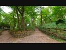 東京散歩 - 井の頭公園
