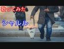 【歌ってみた】シャルル/バルーン