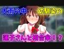 【ゆっくり茶番劇】【ツンデ蓮子の恋模様!?】〈大雨の中蓮子さんと相合傘〉2話
