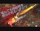 【DBD】キラー4人対サバイバー1人のカスタムマッチ【ナース】