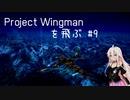 Project Wingman を飛ぶ #9