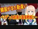 【韓国の反応】日本がどうしてそこに割り込むの?バイデン大統領の対中戦略に韓国さんが何か勘違いを…【世界の〇〇にゅーす】【youtubeは不適切&削除済】