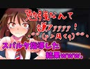 【ゆっくり茶番劇】【ツンデ蓮子の恋模様!?】〈蓮子さんと勉強会〉10話