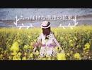 ちっぽけな僕達の花束 (Remaster) / PiroP feat. v-flower 【ボカロオリジナル曲】