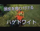 【DBD】プラべでふざけ倒すハゲドワ4人組【サバイバー/配信切り抜き】
