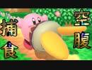 最弱!?ピンクの化物がストレスしかない【カービィ】
