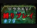 【ドラクエ5 縛りプレイ】エルヘブンから魔界へ…行く前に寄り道しよっかな?Part79【アルカリ性】