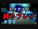 【ドラクエ5 縛りプレイ】サクッとマント取って、魔界にでも行きましょう!Part80【アルカリ性】