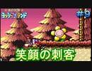 約10年ぶりのヨッシーアイランド【ノーダメージ縛り】実況プレイ PART9