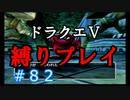 【ドラクエ5 縛りプレイ】エビルマウンテン、頂上目指して行きますか!Part82【アルカリ性】