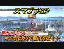 スマブラSP 新DLCキャラ ホムラ/ヒカリの戦い方は!? 【大乱闘スマッシュブラザーズ SPECIAL】