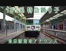 特急踊り子13号[伊豆急下田行]東京駅発車アナウンス
