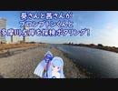 【琴葉姉妹車載】葵さんと茜さんがブロンプトン君と多摩川左岸を探検ポタリング! 【自転車車載動画】