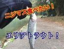 【エリアトラウト】ニジマスが食べたい!よし!釣りに行こう!【もっち釣動組合#75】