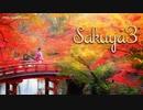 【1時間】Sakuya3【優雅でゆったりとした和風曲】