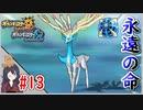 ポケモンUSUM #13 色違いゼルネアス入手まで! 伝説色違い捕獲巡り!ウルトラボールで捕獲せよ!Part13【ポケモンウルトラサンムーン】