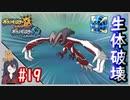 ポケモンUSUM #19 色違いイベルタル入手まで! 伝説色違い捕獲巡り!ウルトラボールで捕獲せよ!Part19【ポケモンウルトラサンムーン】