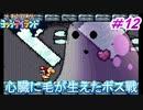 約10年ぶりのヨッシーアイランド【ノーダメージ縛り】実況プレイ PART12