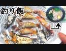 【ぴ】釣ったベラとスズメダイの煮干しでお蕎麦作って食べる 自給自足飯 田舎暮らし