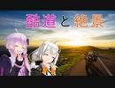 【レコスタ車載】きずゆかふたり旅~part8 景勝地全振り四国旅4
