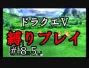 【ドラクエ5 縛りプレイ】ボブルの塔を後にして向かった先は…無数の手!?Part85【酸性】