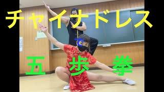【チャイナドレス】五歩拳やってみた【五歩拳】