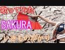 【歌ってみた】SAKURA/いきものがかり