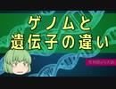 【ゆっくり解説】遺伝子とゲノムの違いとは?