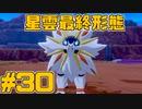 【役割論理】ポケモン剣盾で役割論理ですぞpart30 太陽の化身(炎弱点)編【ヤルガレオ】