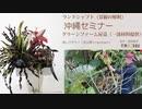 [seminar]沖縄「ランドシャフト・解釈」レクチャー009(in屋嘉2021.03)