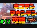 スーパーマリオフューリーワールド実況プレイ#12【ネコマンマウンテン攻略】
