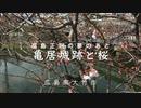 【福島正則夢のあと】「 亀居城跡 」と桜 前編(JR玖波駅〜亀居城公園へ入るまで)