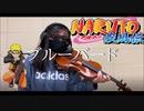 ブルーバード いきものがかり  バイオリンで弾いてみた 【コロにゃん】