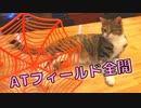 【最強の使徒襲来!?】ATフィールドをくしゃみで破壊する使徒(猫)がこちらです…w