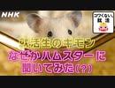 [就活応援] 自己分析のしすぎに注意!? | コワくない。就活 | NHK