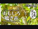 0329B【ガビチョウの鳴き声】水浴び後の羽繕い。シジュウカラの変わった鳴き声とメジロの声。桜にヒヨドリ。ツチイナゴにガガンボの交尾 コンデジ野鳥撮影 #身近な生き物語 #ガビチョウ #鳥の鳴き声