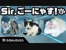 悪の組織が猫に!猫を声福するための作戦がはじまる
