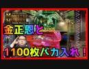 【メダルゲーム】金正恩とバカ入れでモンスターをハンティング!?「モンスターハンターメダルハンティング」