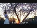 【みゆ】さようなら、花泥棒さん【踊ってみた】