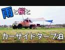 桜雨の中キャンプ飯を楽しむ!【VOICEROIDキャンプ】