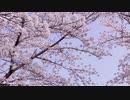 Hisα MV 「駆け出した春 feat.GUMI」