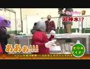 DB芸人レギュラー争奪戦 ボウリング対決2