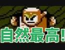 【実況】対環境保護プログラム(ロックマン2:VSウッドマン)