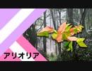 """【折り紙】「アリオリア」 26枚【創造性】/【origami】""""Arioria"""" 26 pieces【creativity】"""