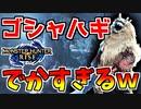 【モンハンライズ】新牙獣種のゴシャハギがでか過ぎるんだがww#16